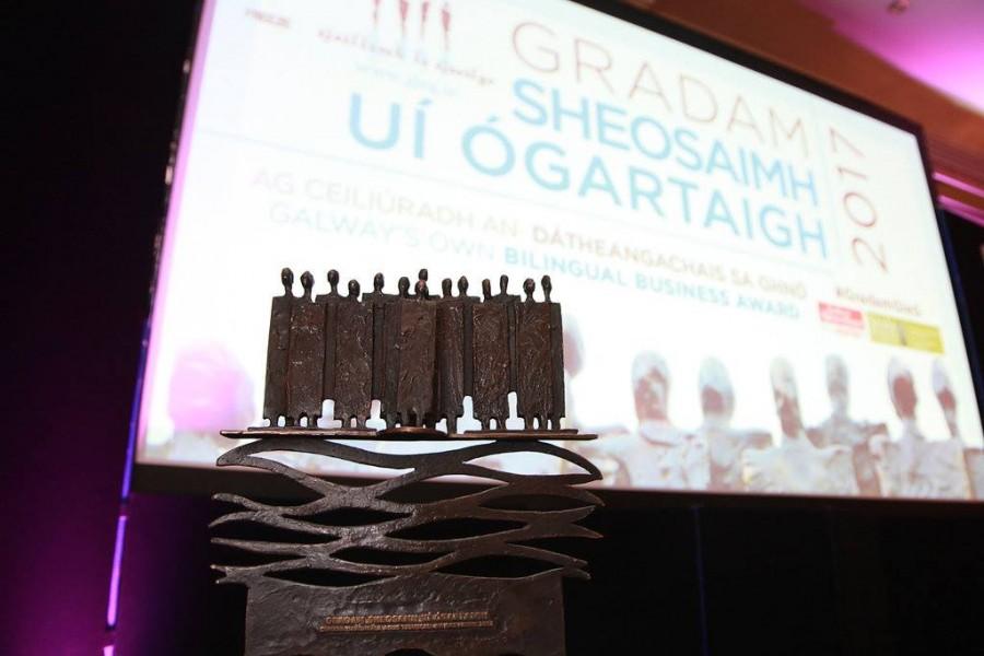 Gradam Sheosaimh Uí Ógartaigh 2017